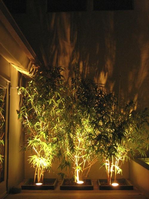 Hiasan Perkarangan Rumah Dengan Lampu Taman Yang Indah